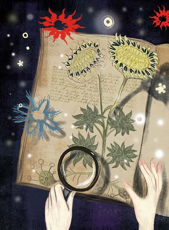 Bookcolorcorr